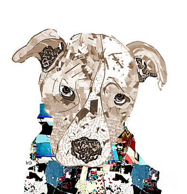 A Pit Bull Day Poster by Bri B