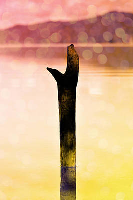 A Pole In The Water Poster by Toppart Sweden