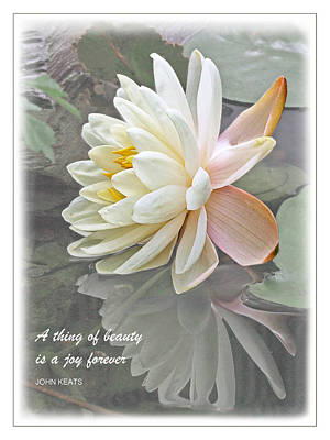 A Thing Of Beauty Is A Joy Forever Poster by Gill Billington