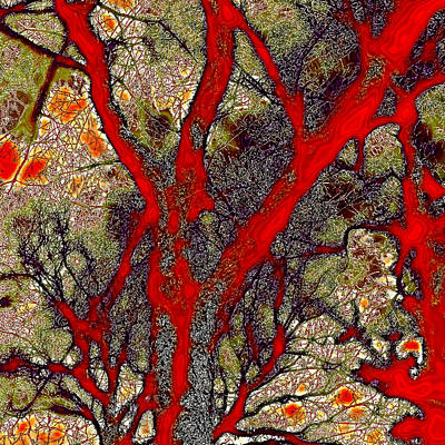 A Touch Of Autumn Abstract Poster by David Patterson