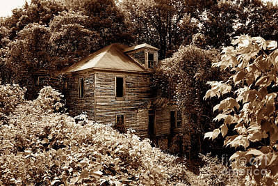 Abandoned In Time Poster by Melissa Petrey