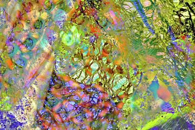 Abstract Polarised Light Micrographs Poster by Steve Lowry