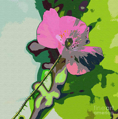 Textured Abstract Poppy Poster by K D Graves