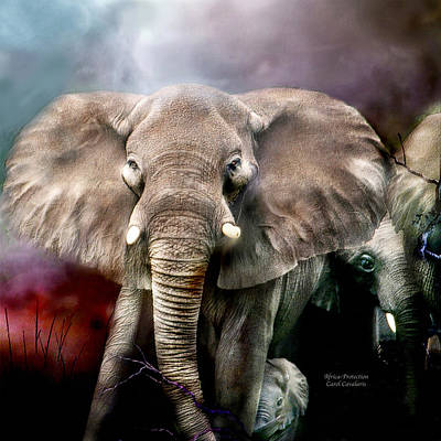 Africa - Protection Poster by Carol Cavalaris