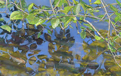 Alder Leaves And Koi Poster by Nick Payne