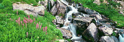 Alpine Garden Near Cascade Waterfall Poster by Panoramic Images