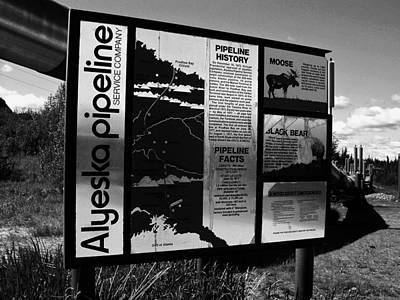 Alyeska Pipeline Poster by Juergen Weiss