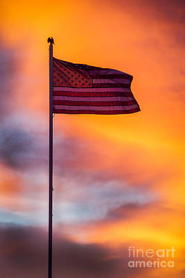 American Flag Poster by Robert Bales