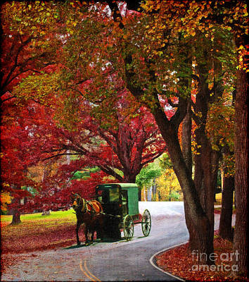 An Amish Autumn Ride Poster by Lianne Schneider