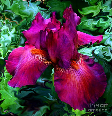 An Iris Adrift In Spring Colors Poster by Kim Pate