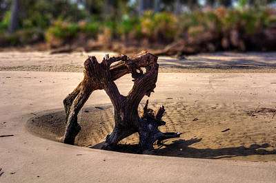 Anchor Driftwood On Jekyll Island Poster by Chrystal Mimbs