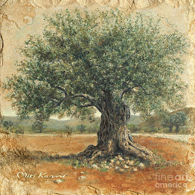 Ancient Olive Tree Poster by Miki Karni