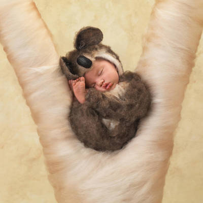 Angelina Poster by Anne Geddes
