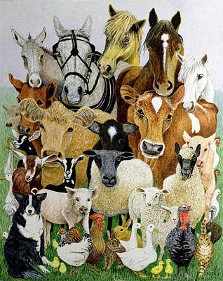 Animal Allsorts Oil On Canvas Poster by Pat Scott