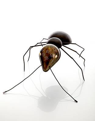 Ant Poster by Lawrie Simonson
