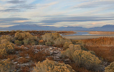 Antelope Island - Scenic View Poster by Ely Arsha