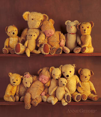 Antique Teddies Poster by Anne Geddes