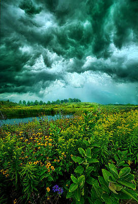 Any Port Poster by Phil Koch