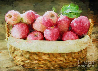 Apple Harvest Poster by Darren Fisher