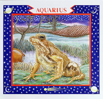 Aquarius Wc On Paper Poster by Catherine Bradbury