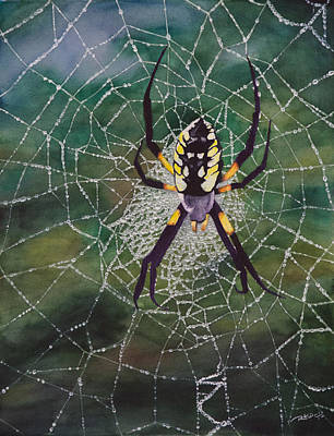 Argiope Web Poster by Christopher Reid
