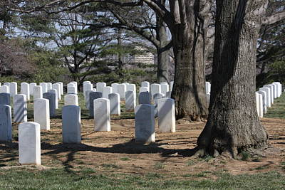Arlington National Cemetery - 12123 Poster by DC Photographer
