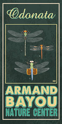 Armand Bayou Dragonfly Poster by Jim Sanders