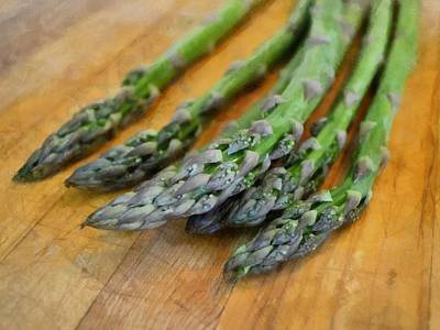 Asparagus Poster by Michelle Calkins