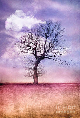 Atmospheric Tree - Early Spring Poster by VIAINA Visual Artist