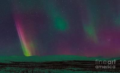 Aurora Borealis, Lapland, Sweden Poster by Babak Tafreshi, Twan