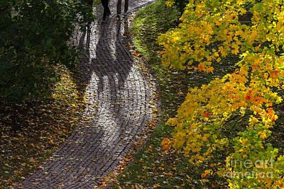 Autumn 02 Poster by Tom Uhlenberg