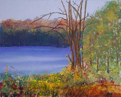 An Autumn Day At Cary Lake Poster by David Patterson