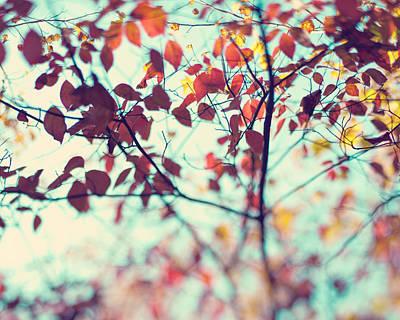 Autumn Beauty Poster by Kim Fearheiley