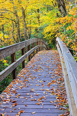 Coaxing - Autumn Bridge Poster by Carol VanDyke