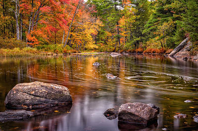 Autumn Color On The Isinglass River Poster by Jeff Sinon