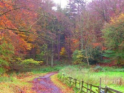 Autumn Colour Poster by Jefferson Payne