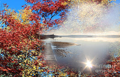 Autumn Dreaming Poster by Cathy  Beharriell