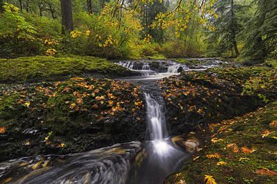 Autumn Euphoria  Poster by Mark Kiver