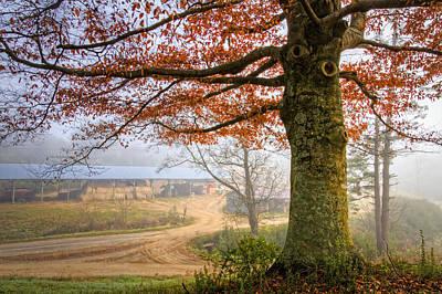 Autumn Farm Lane Poster by Debra and Dave Vanderlaan