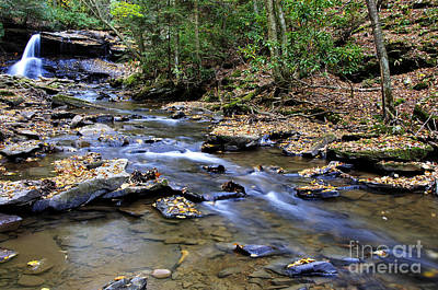 Autumn Holly River State Park Poster by Thomas R Fletcher