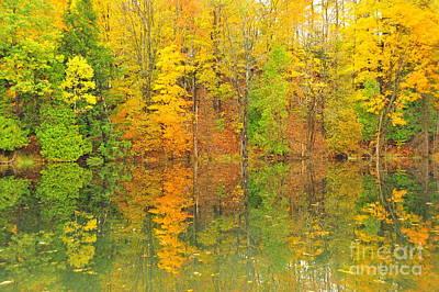 Autumn Kaleidoscope 12 Poster by Terri Gostola