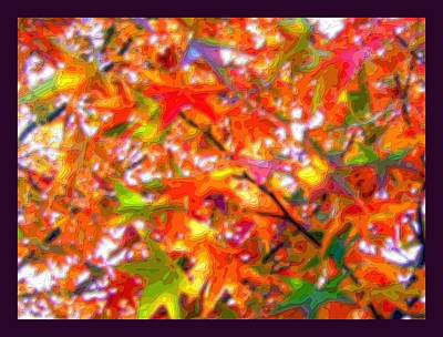 Autumn Leaves Through Filtered Sunlight Cropped X 2 Poster by L Brown