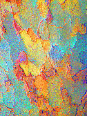 Autumn London Plane Tree Abstract 2 Poster by Margaret Saheed