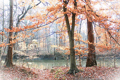 Autumn Mist Poster by Lorna Rogers Photography