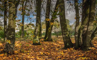 Autumn Parkland Poster by Chris Fletcher