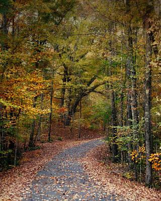 Autumn Passage 5 - Fall Landscape Scene Poster by Jai Johnson