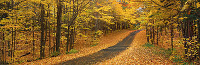 Autumn Road, Emery Park, New York Poster by Panoramic Images