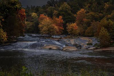 Autumn Splendor Poster by Cindy Rubin