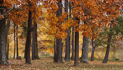 Autumn View Poster by Sandy Keeton