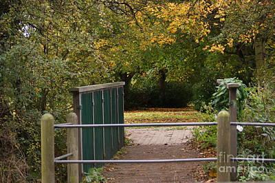 Autumn's Wondrous Colors 3 Poster by Carol Lynch